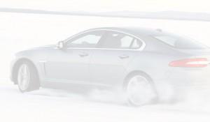 cars-bg-03
